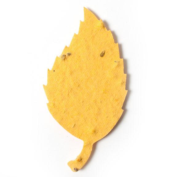 Seed Paper Shape Aspen Leaf 1 - Desert Orange