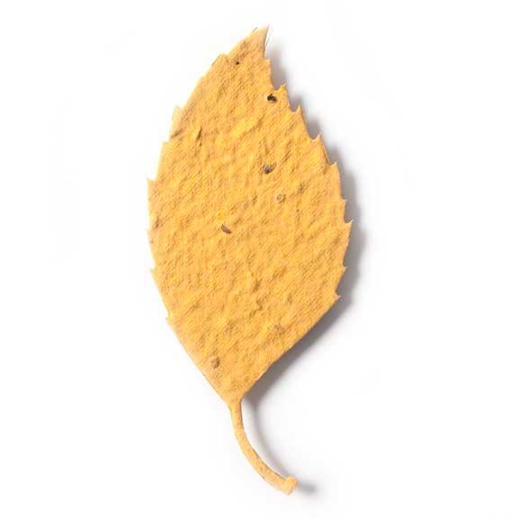 Seed Paper Shape Aspen Leaf 2 - Desert Orange