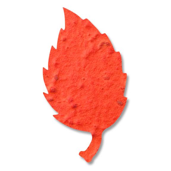 Seed Paper Shape Aspen Leaf 4 - Orange