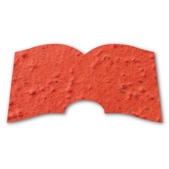 Seed Paper Shape Book - Orange