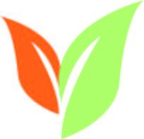 Seed Paper Square Bookmark - Orange