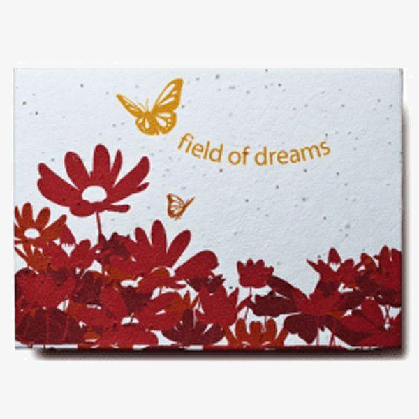 Seed Paper Envelopes