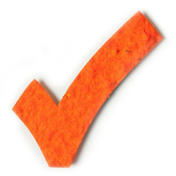 Seed Paper Shape Check Mark - Orange