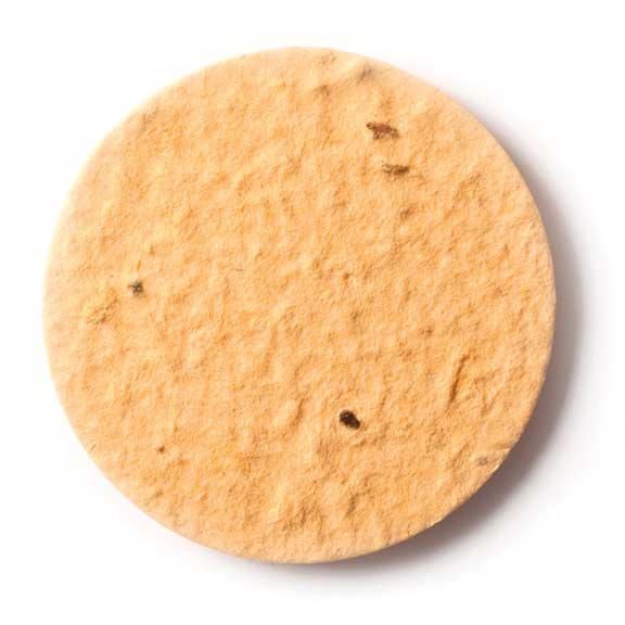 Seed Paper Shape Circle 2 - Desert Orange