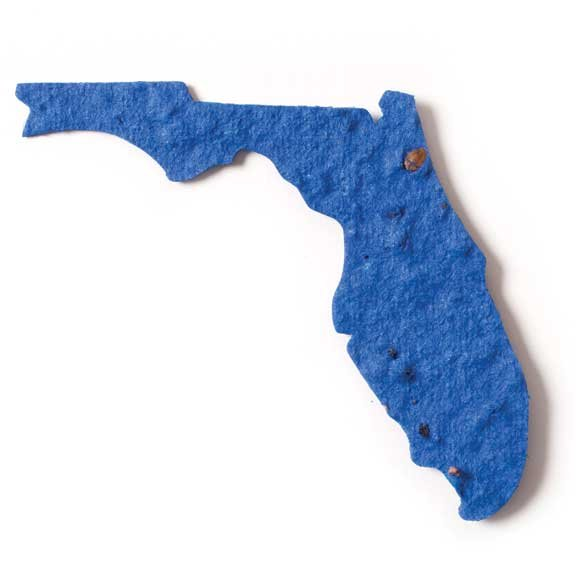 Seed Paper Shape Florida - Royal Blue