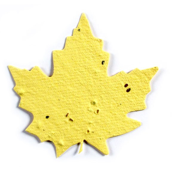 Seed Paper Shape Maple Leaf 1 - Yellow