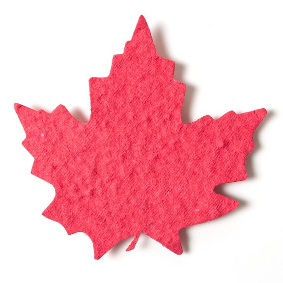 Seed Paper Shape Maple Leaf 2 - Cranberry Red