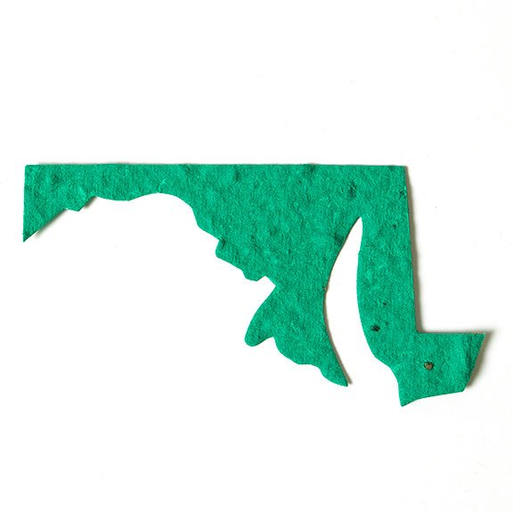 Seed Paper Shape Maryland - Sage Green