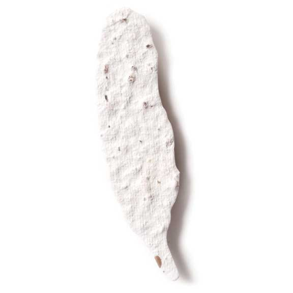Seed Paper Shape Feather - White