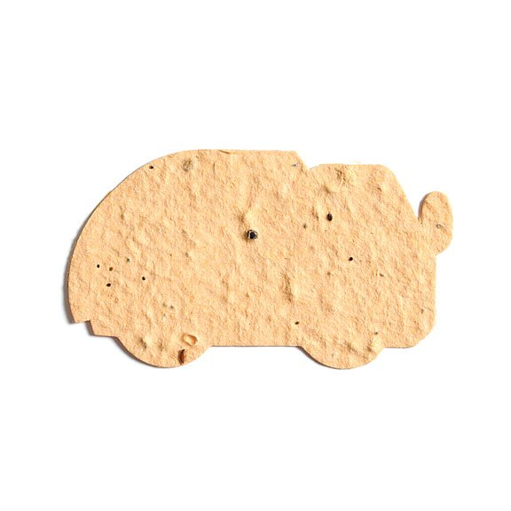 Seed Paper Shape Truck - Natural Brown