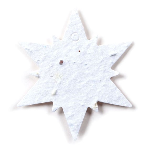 Seed Paper Shape Snowflake 1 - White