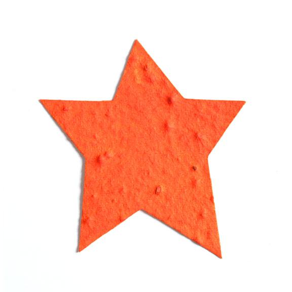 Seed Paper Shape Star 3 - Orange