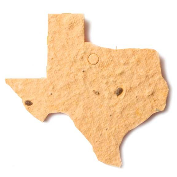Seed Paper Shape Texas - Natural Brown