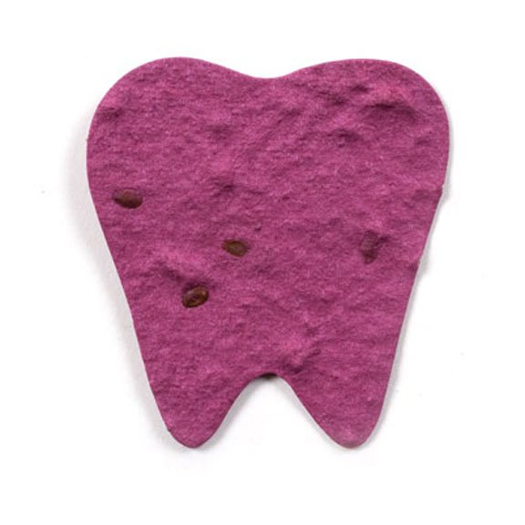 Seed Paper Shape Tooth 2 - Burgundy Red