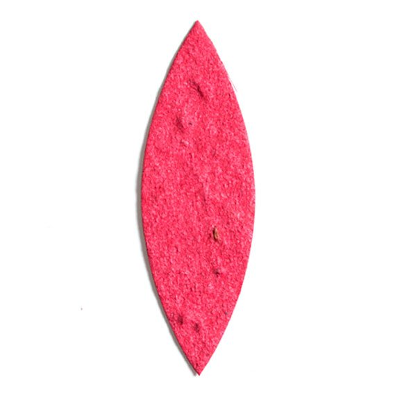 Seed Paper Shape Willow Leaf - Cranberry Red