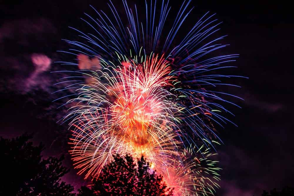 fireworks of all colors explode over trees